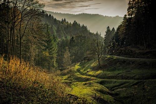 Sommerferien 2020 im Schwarzwald