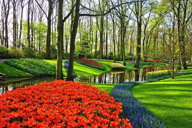 Sightseeing in den Niederlanden, Tulpen, Keukenhof