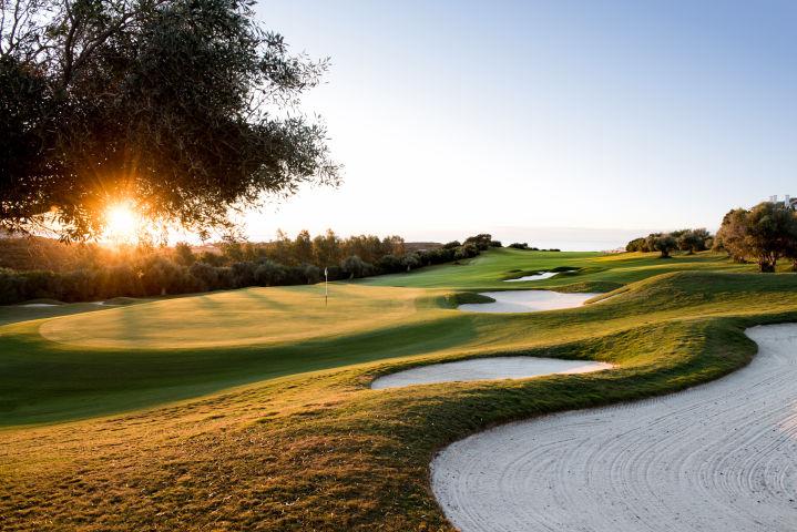 terrains de golf